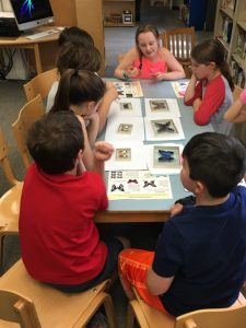 Third Graders apply what they've learned about variation and adaptation as they identify butterfly defense strategies using specimens from the world famous Denton Butterfly Collection from the Wellesley Historical Society.