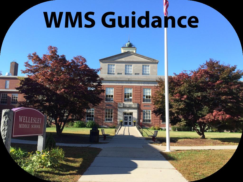 WMS Guidance